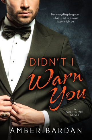 Didn't I Warn You by Amber Bardan Australian Cover