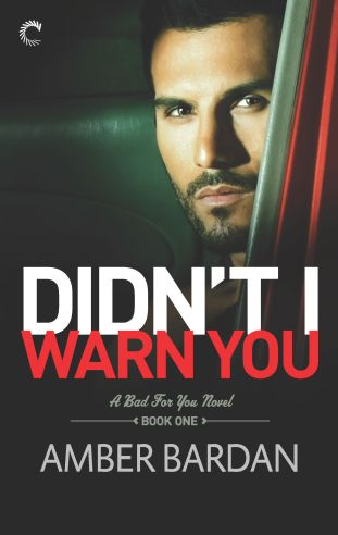Didn't I Warn You by Amber Bardan Cover