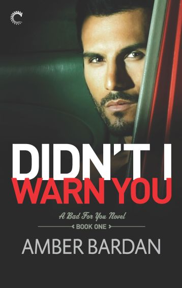 Didn't I Warn You by Amber Bardan Cover