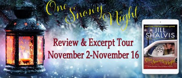 one-snowy-night-tour-banner