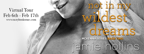 vt-notinmywildestdreams-jhollins_final