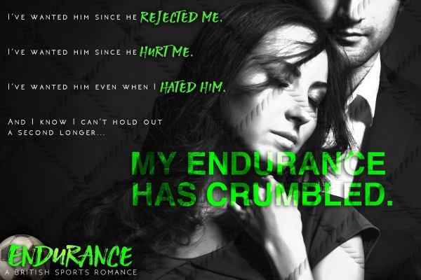 endurance teaser 3