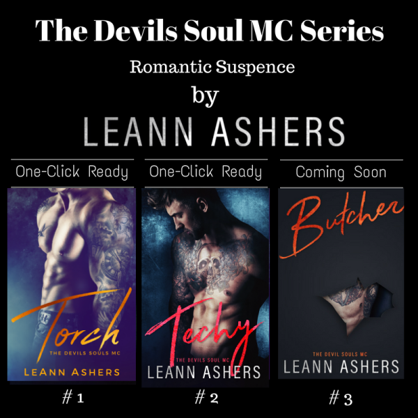 the devils soul mc series