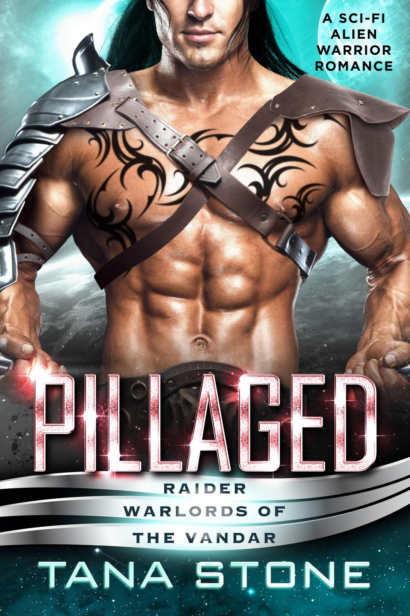 PillagedEbookCover